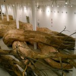 Tree-Root-Tunnel-Installation-1-644x478